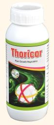 thoricor