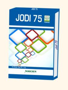 JODI 75