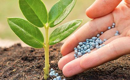 fertilizer_division